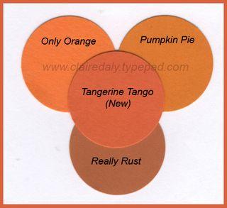 Tangerine Tango with Border