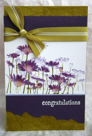 Upsy Daisy congrats