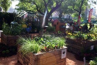 Sm kitchen garden