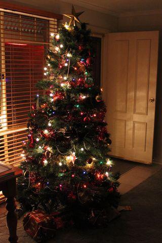 Sm 2011 Christmas Tree