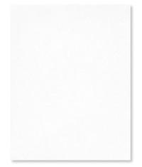 Shimmer White cardstock stampin up