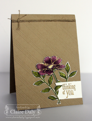 Stampin' Up! Peaceful Petals coloured with Blendabilities by Claire Daly, Stampin Up Demonstrator Melbourne Australia at www.clairedaly.typepad.com