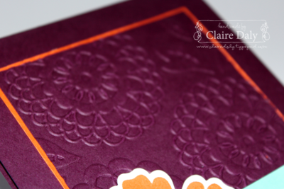 Stampin' Up! Mixed Bunch and Lovely Lace Embossing Folder for SB65 by Claire Daly Stampin' Up! Australia at www.clairedaly.typepad.com