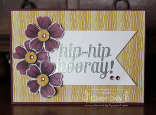 Stampin' Up! Blendabilities Techniques using Bravo and Flower Shop by Claire Daly melbourne Australia at www.clairedaly.typepad.com