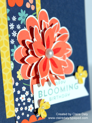 Stampin' Up! Flower Patch Birthday Card with Flowerpot DSP by Claire Daly Stampin Up Demonstrator Melbourne Australia