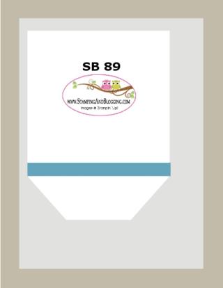 SB 89 Jan 28