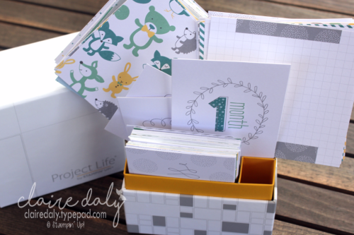 Stampin Up Project Life Hello Baby Boy Card Collection by Stampin Up. Available in my online store.