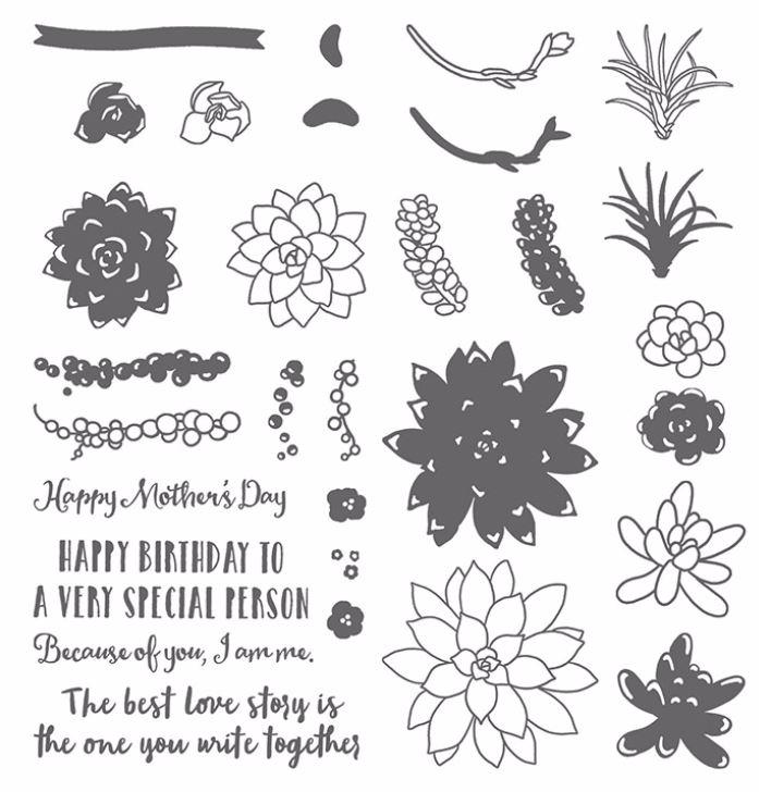 Image result for stampin up oh so succulent stamp set