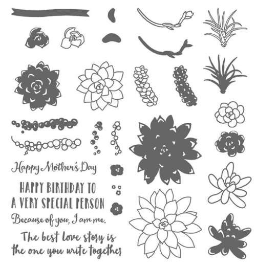 Oh So succulent stamp set by Stampin Up. Avaialble to be purchased in my online store or by phone / email and sent anywhere in Australia. Click for more details. Great for those who love garden succulents.