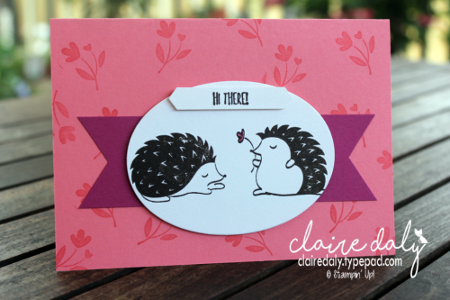 Stampin Up Hedgehugs cards from Occasions 2018. Claire Daly, Stampinup Demonstrator Melbourne Australia. #stampinup #hedgehugs, #clairedaly #ossasions2018