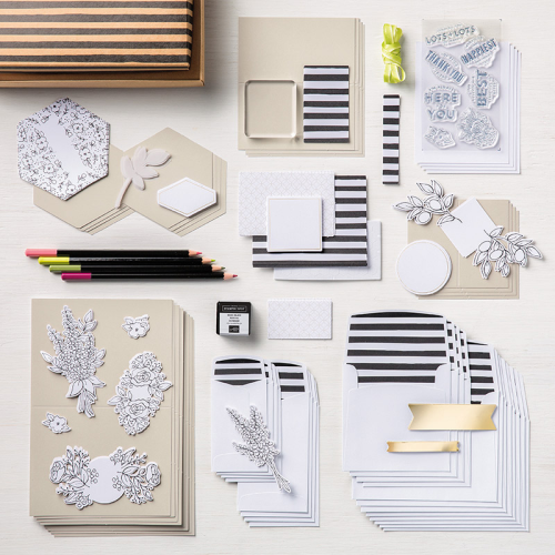 Stampin Up Lots of Happy Card Kit
