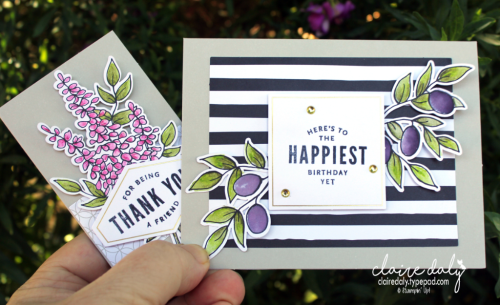 Stampin Up Lots of Happy Card Kit cards by Claire Daly Stampin' Up! Demonstrator Melbourne Australia