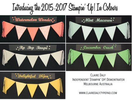 2015 Stampin Up In Colours from pictures taken at the South Pacific Convention. Click through to see samples of the new In Colour accessories.