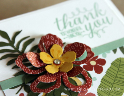 Stampin Up On Stage / Occasions Catalogue 2016 sneak peeks. Botanical Gardens Suite. Claire Day Australia.