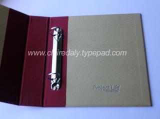 PL 6x8 inside album