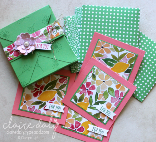 Mini card box and cards / enveloes made with Envelope Punch Box using Fruit Stand DSP by Claire Daly Stampin' Up! Demonstrator Melbourne Australia.