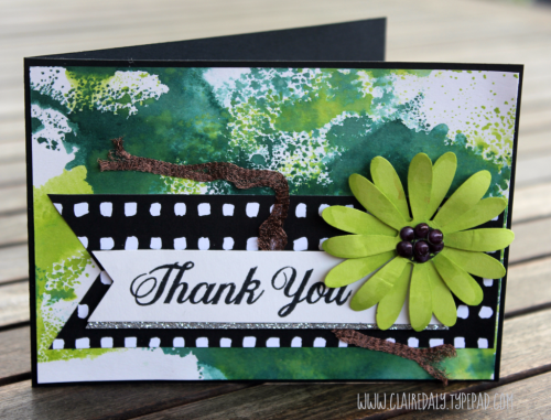 Stampin Up 2017/18 Annual Catalogue Sneak Peek Daisy Delight stamp set. Daisy Punch, Lemon Lime Twist, Tranquil Tide, watercolor background, copper trim