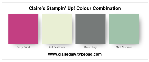 Claire's Stampin' Up!  2018 Colour / color Combination soft sea foam, mint macaron, basic gray and berry burst. Click through for a project example.