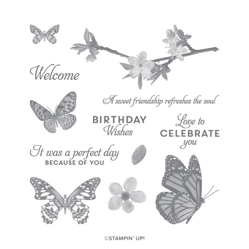 Stampin Up Butterfly Wishes Distinktive stamp set from 2019 Annual Catalogue. Buy online in Australia from Claire Daly, Stampin' Up! Demonstrator Melbourne Australia