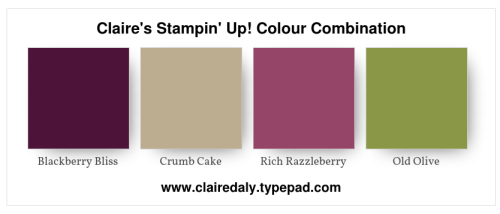 Stampin Up 2019 color / colour combination using Blackberry Bliss, Old Olive, Crumb Cake and Rich Razzleberry. Click through to see a card using this colour combination by Claire Daly, Stampin' Up! Demonstrator Melbourne Australia.