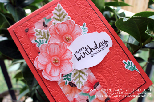 Stampin Up Painted Seasons 2019 Saleabration birthday card by Claire Daly, Stampin' p! Demonstrator Melbourne Australia