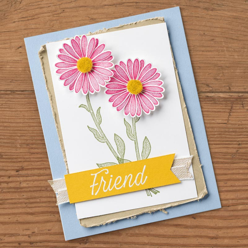 Stampin Up Daisy Lane (Stampin Up Sample)