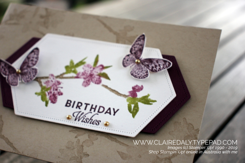 Stampin Up Butterfly Wishes Distinktive stamp set from 2019 Annual Catalogue. Birthday card by Claire Daly, Stampin' Up! Demonstrator Melbourne Australia