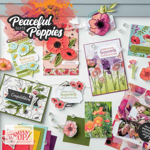 Stampin Up Peaceful Poppies suite available at clairedaly.typepad.com