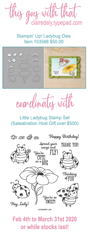 Stampin Up dies that coordinate with Little Ladybug Saleabration 2020 host stamp set