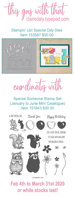 Stampin Up dies that coordinate with Special Someone stamp set in the 2020 January to June Mini Catalogue