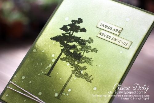 Stampin Up Monochromatic Rooted in Nature Sympathy card by Claire Daly Stampin Up Demonstrator Melbourne Australia