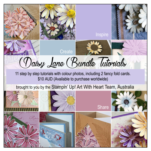 Daisy Lane Tutorial Ad Purchase