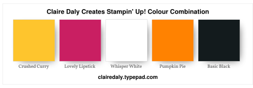 Claire Daly 2020 Stampin' Up! Colour Combination Crushed Curry, Lovely Lipstick, Pumpkin Pie