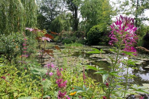 Moents Garden 2
