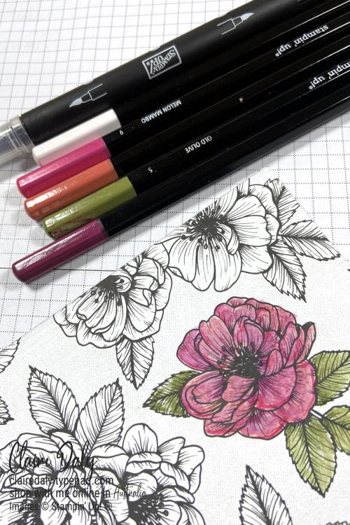 DSP pencils technique wm