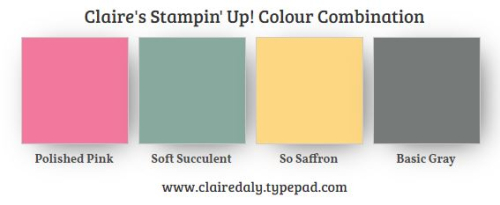 Stampin Up Color Combination 2021 InColors. Polished Pink, Soft Succulent, So Saffron and Basic Gray
