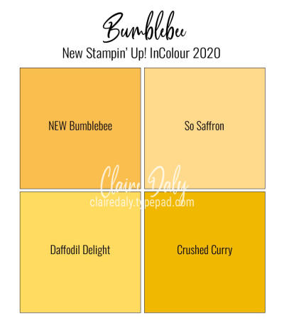 Stampin Up Bumblebee new 2020 In Colour / Color.