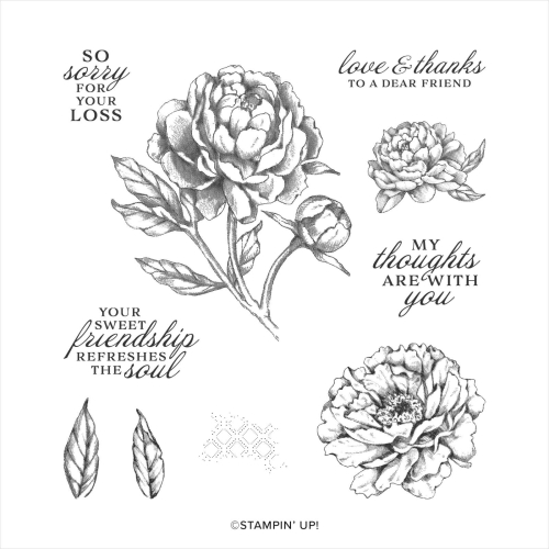 Stampin Up Prized Peony stamp set. Buy in Australia in my online store.