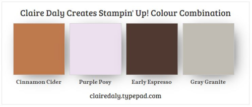 Stampin Up In Color 2020 combination Cinnamon Cider, with Early Espresso, Gray Granite and Purple Posy