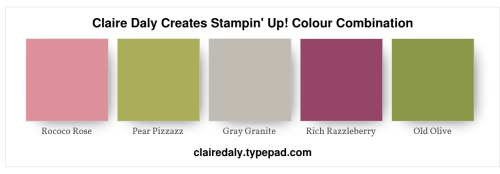 Stampin Up Colour combination: Rococo Rose. Old Olive, Pear Pizazz, Rich Razzleberry, Gray Granite