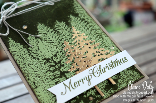 2020 Stampin Up Christmas Card using Evergreen 3D Embossing Folder, In the Pines Bundle, inked embossing folder technique. Card by Claire Daly Stampin' Up! Demonstrator Melbourne Australia