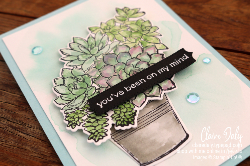 Stampin Up Simply Succulents Stamp set (available January 5th 2021) watercoloured by Claire Daly Stampin Up! Demonstrator Melbourne Australia. Request 2021 catalogues in Australia now.