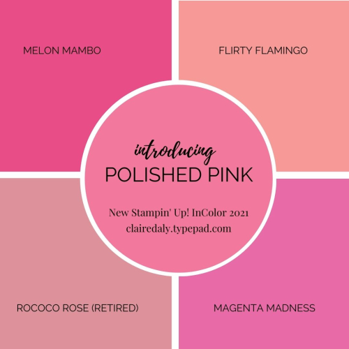 Polished Pink New Stampin Up 2021 InColor