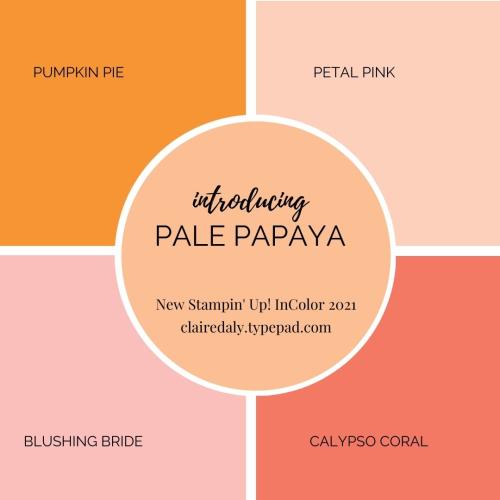 Pale Papaya