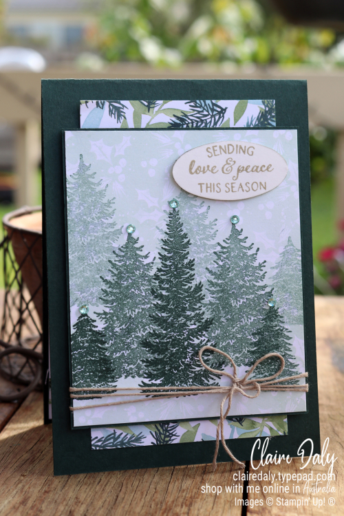 Stampin Up Evergreen Elegance and Painted Christmas 2021 Stampin Up Christmas Card by Claire Daly, Stampin Up Demonstrator Melbourne Australia.