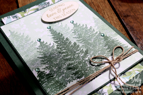 Stampin Up Evergreen Elegance and Painted Christmas 2021 Stampin Up Christmas Card by Claire Daly, Stampin Up Demonstrator Melbourne Australia