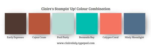 Stampin Up color combination Cajun Craze, Early Espresso, Bermuda Bay, Pool Party, Misty Moonlight.