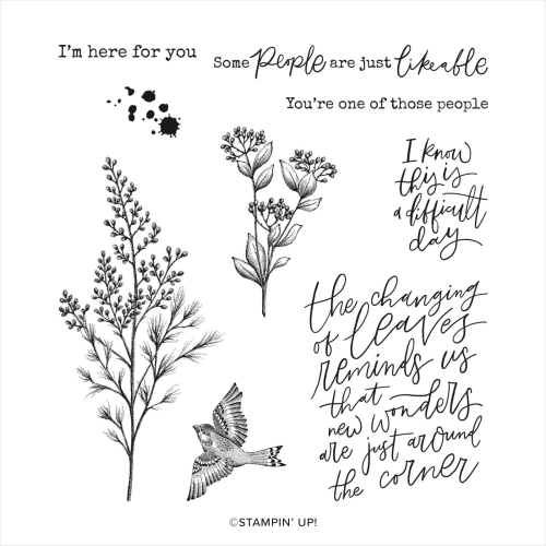 Stampin Up Beaty of tomorrow stamp set. Available in Australia from Claire Daly Stampin Up Demonstrator Melbourne Australia