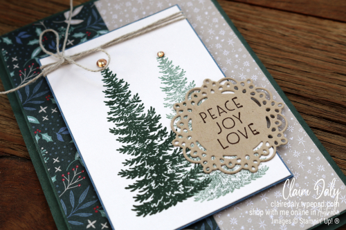 Stampin Up Evergreen Elegance 2021 Christmas card by Claire Daly, Stampin Up Demonstrator Melbourne Australia.