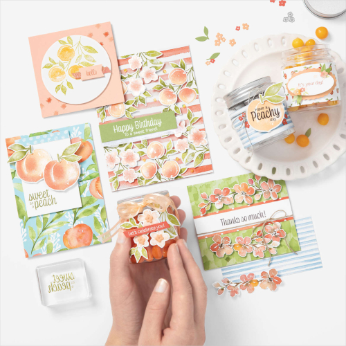 Stampin Up 2021 You're a Peach Product Suite.
